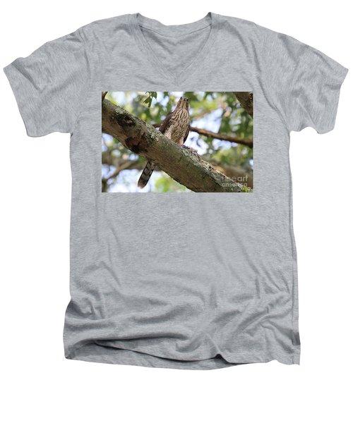 Hawk On A Branch Men's V-Neck T-Shirt