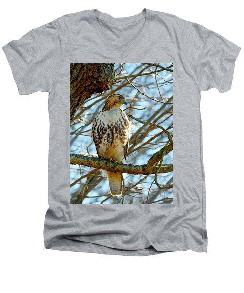 Hawk Men's V-Neck T-Shirt