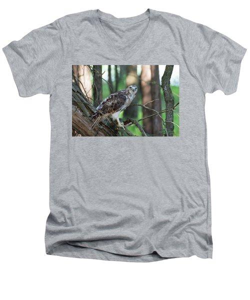 Hawk Portrait Men's V-Neck T-Shirt