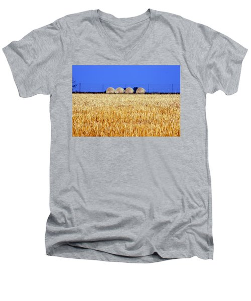 Hay Hay Men's V-Neck T-Shirt