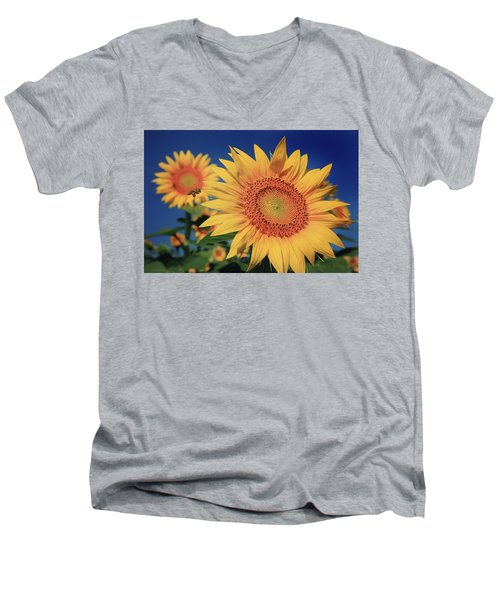Men's V-Neck T-Shirt featuring the photograph Heading For Gold by Chris Berry