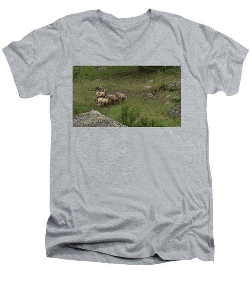 Hearding Goats Men's V-Neck T-Shirt