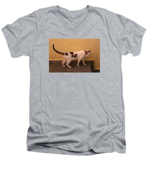 Heart Cat At Rosie's In Ganeshpuri Men's V-Neck T-Shirt by Jennifer Mazzucco