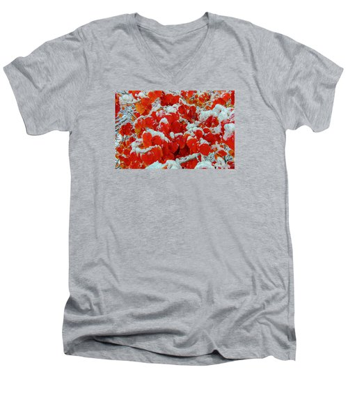 Heart Shape Leaves Covered By Snow Men's V-Neck T-Shirt
