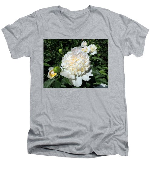 Heavenly White Men's V-Neck T-Shirt