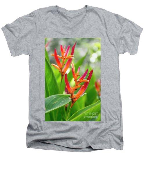 Heliconia Psittacorum Men's V-Neck T-Shirt