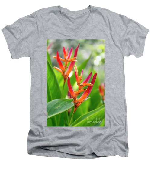 Heliconia Psittacorum Men's V-Neck T-Shirt