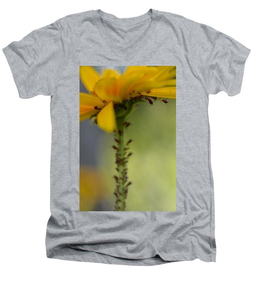 Heliopsis Infested Men's V-Neck T-Shirt