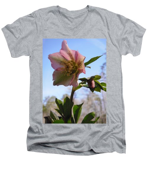 Hellebore Morning Men's V-Neck T-Shirt