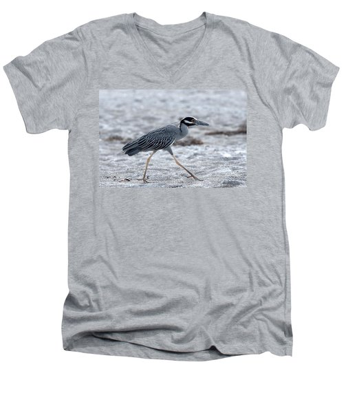 Yellow-crowned Night Heron On A Mission Men's V-Neck T-Shirt