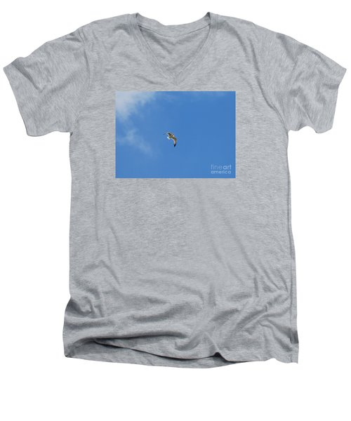 Herring Sea Gull 20120409_244a Men's V-Neck T-Shirt