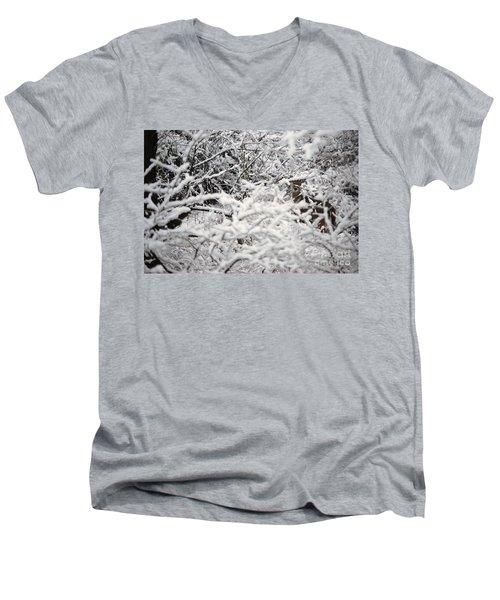 Hidden Treasure Men's V-Neck T-Shirt by Eric Liller