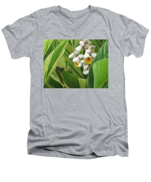 Hidden Tropic Men's V-Neck T-Shirt