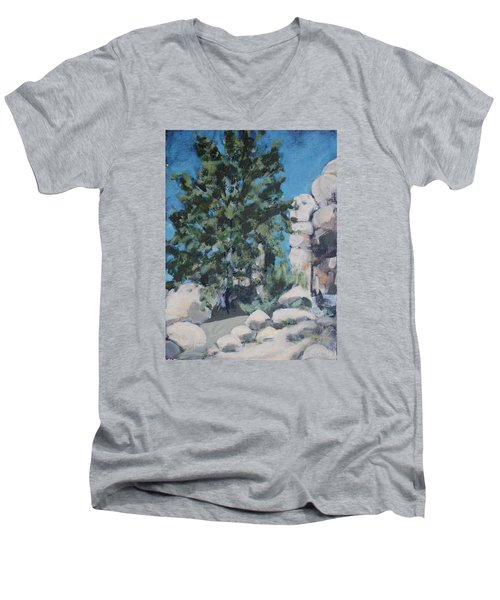 Hidden Valley Men's V-Neck T-Shirt by Richard Willson