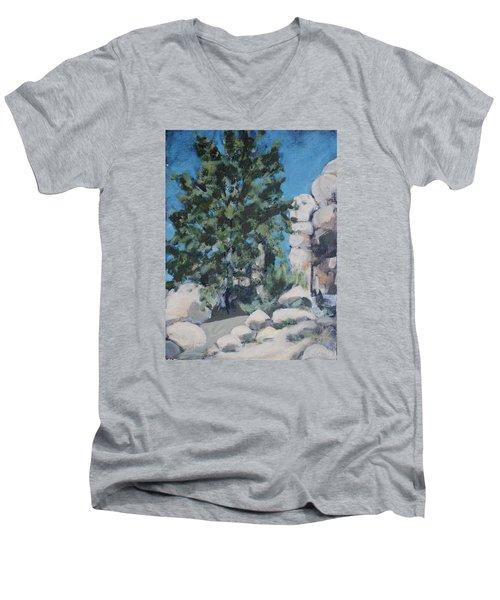 Hidden Valley Men's V-Neck T-Shirt