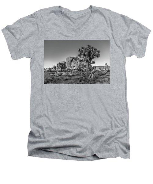 Hidden Valley Rock Men's V-Neck T-Shirt