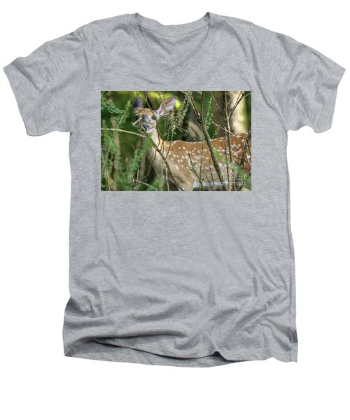 Hiding Fawn Men's V-Neck T-Shirt