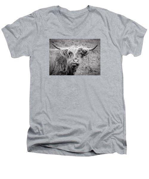 Highland Cow Men's V-Neck T-Shirt by Jeremy Lavender Photography