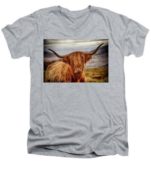 Highland Cow Men's V-Neck T-Shirt