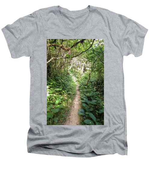 Hiking Path In The Atlantic Forest Men's V-Neck T-Shirt