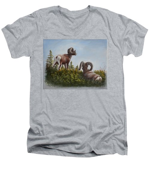 Hill Top View Men's V-Neck T-Shirt