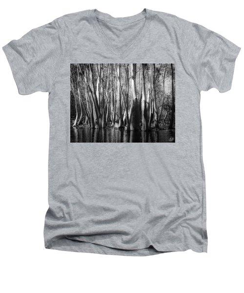 Hillsborough Zen Men's V-Neck T-Shirt