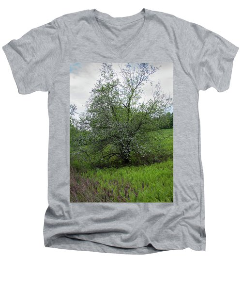 Men's V-Neck T-Shirt featuring the photograph Hillside Lady by Michael Friedman