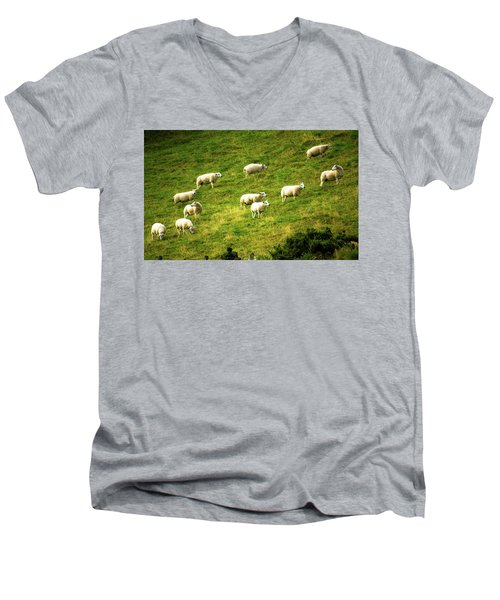 Hillside Pasture Men's V-Neck T-Shirt