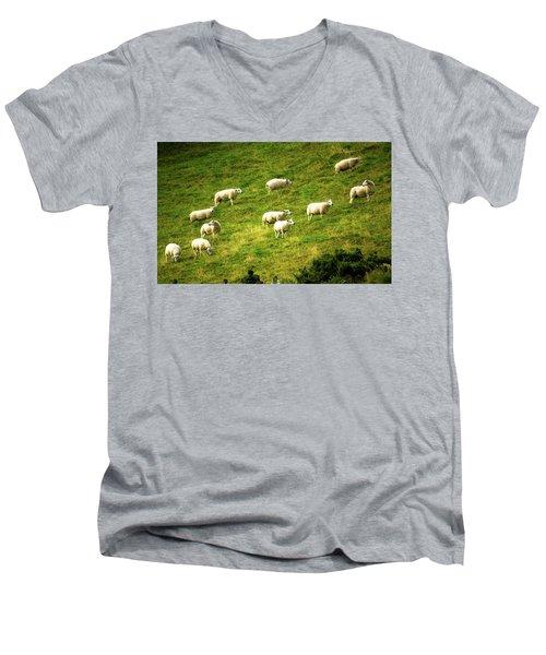 Hillside Pasture Men's V-Neck T-Shirt