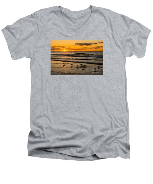 Hilton Head Seagulls Men's V-Neck T-Shirt