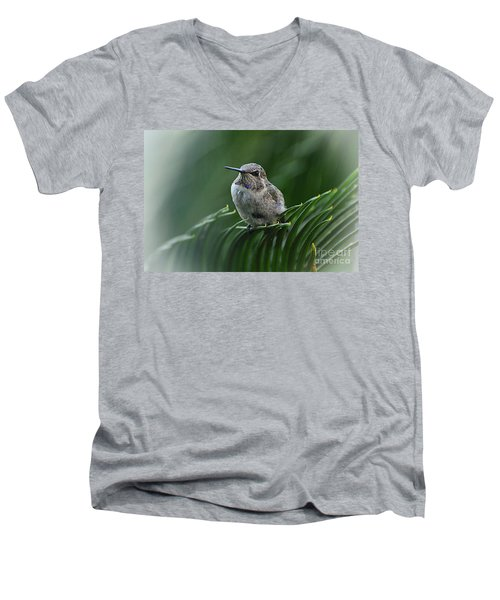 Men's V-Neck T-Shirt featuring the photograph Hint Of Purple by Debby Pueschel