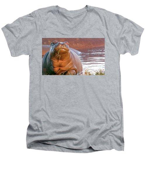 Hippo Snacks Men's V-Neck T-Shirt