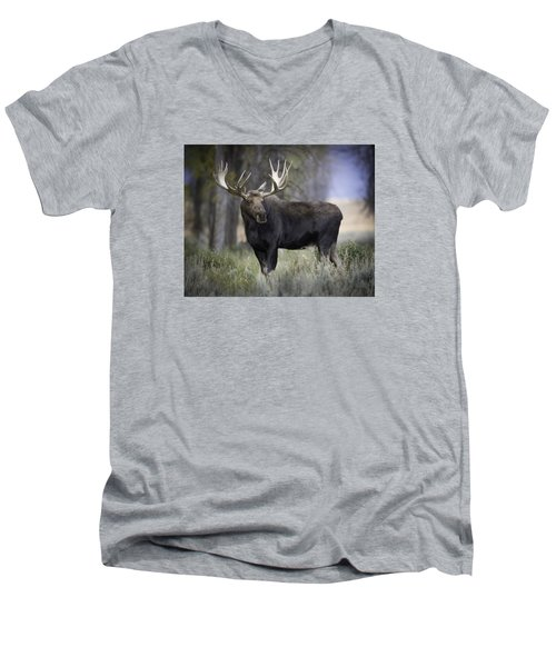 His Majesty Men's V-Neck T-Shirt
