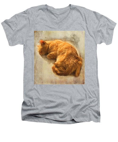 Men's V-Neck T-Shirt featuring the photograph His Place In The Sun by Bellesouth Studio