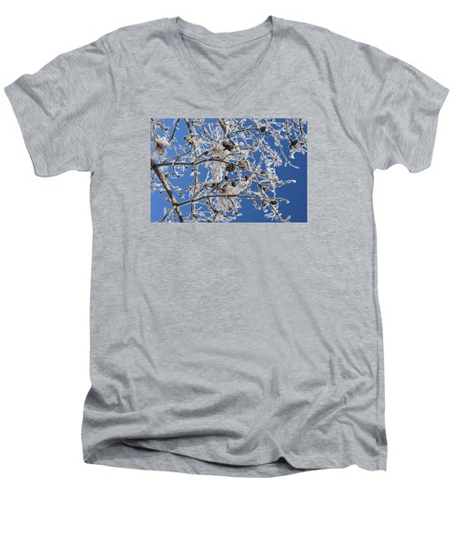 Men's V-Neck T-Shirt featuring the photograph Hoar Frost by Dacia Doroff