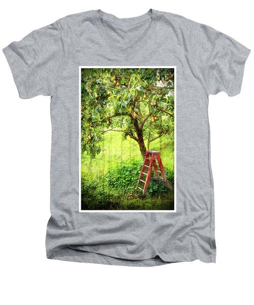 Hobbit Pear Tree Men's V-Neck T-Shirt