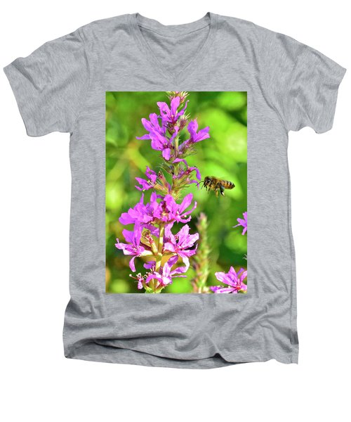 Honey Bee In Flight Men's V-Neck T-Shirt
