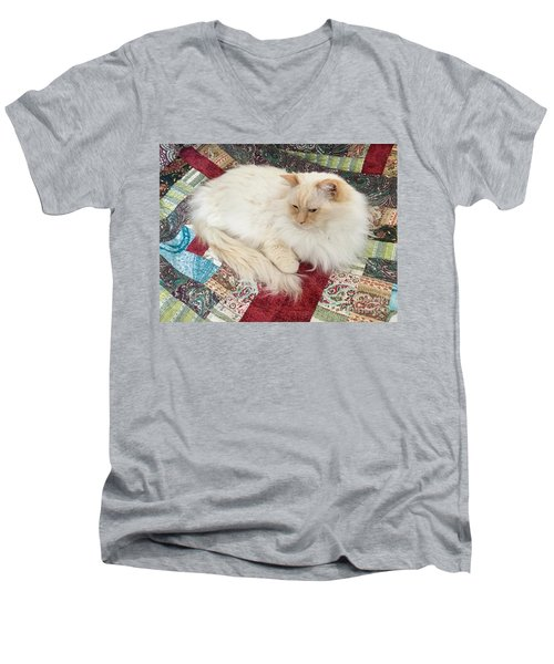 Honey My Helper Men's V-Neck T-Shirt