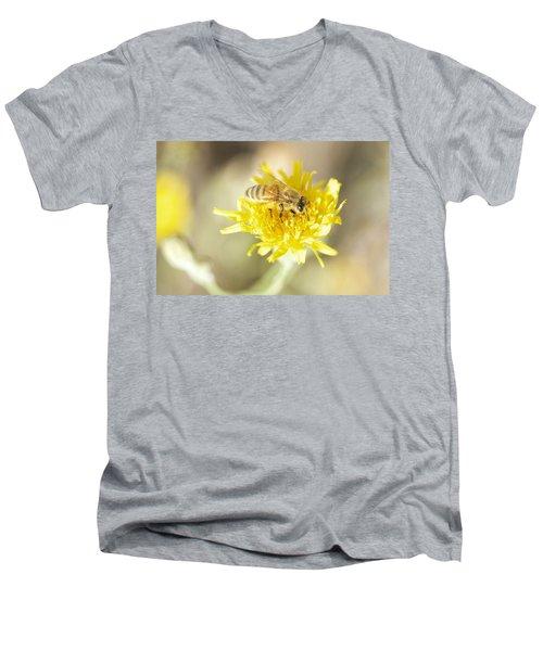 Honeybee Men's V-Neck T-Shirt