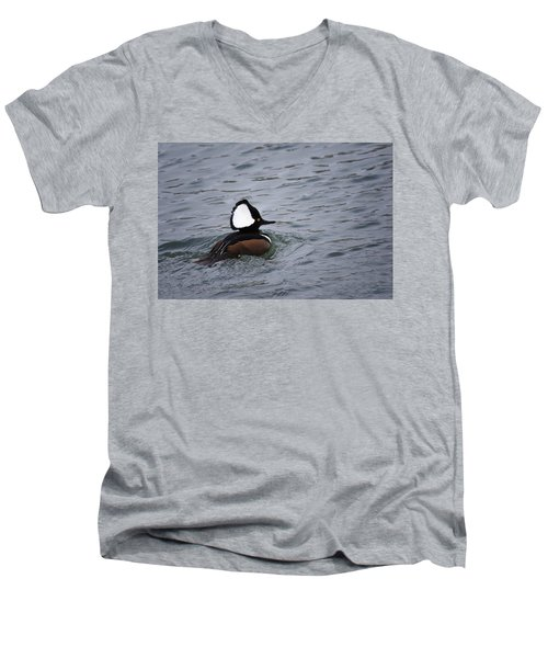 Hooded Merganser 3 Men's V-Neck T-Shirt