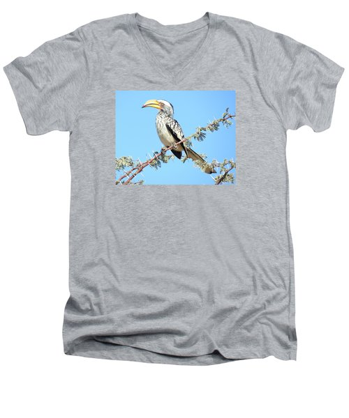 Hornbill In Thorn Tree Men's V-Neck T-Shirt