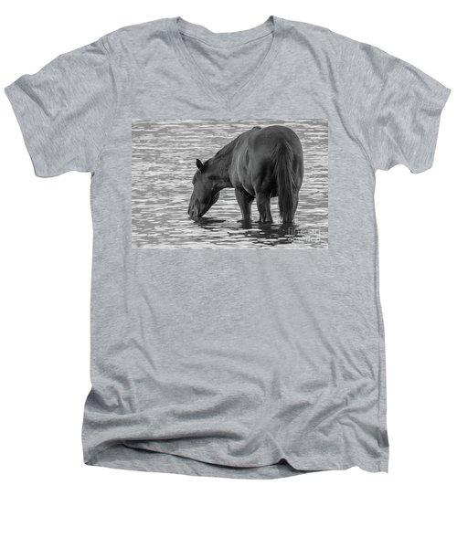 Horse 5 Men's V-Neck T-Shirt
