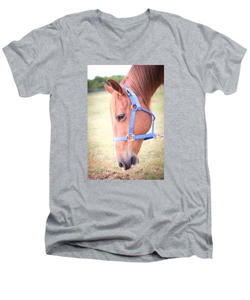 Horse Eating Grass Men's V-Neck T-Shirt by Kelly Hazel