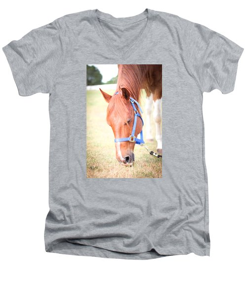 Horse Eating In A Pasture In Vibrant Color Men's V-Neck T-Shirt