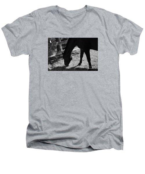Horse In Black And White Men's V-Neck T-Shirt
