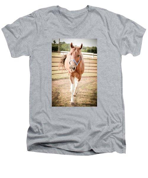 Horse Walking Toward Camera Men's V-Neck T-Shirt by Kelly Hazel
