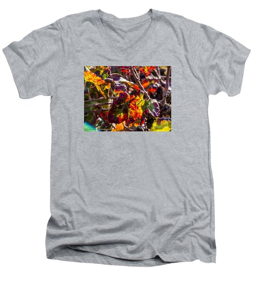 Hot Autumn Colors In The Vineyard 04 Men's V-Neck T-Shirt by Arik Baltinester