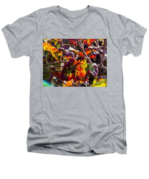 Hot Autumn Colors In The Vineyard 04 Men's V-Neck T-Shirt