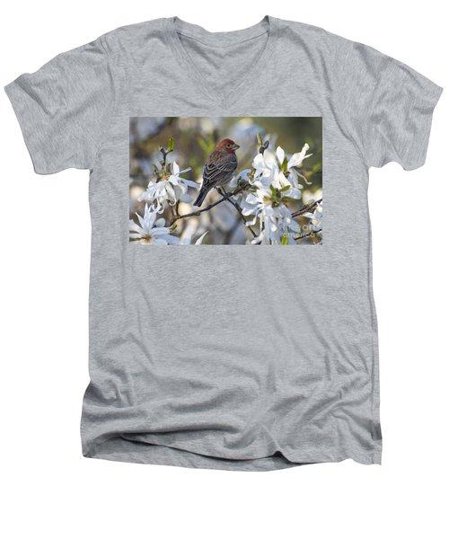 Men's V-Neck T-Shirt featuring the photograph House Finch - D009905 by Daniel Dempster