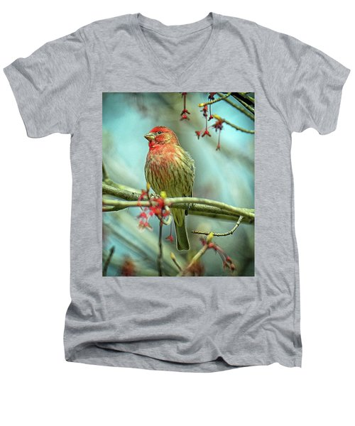 Men's V-Neck T-Shirt featuring the photograph House Finch In Spring by Rodney Campbell